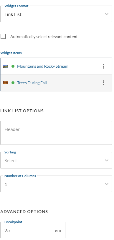 Link_List_Widget_Format_Options.png